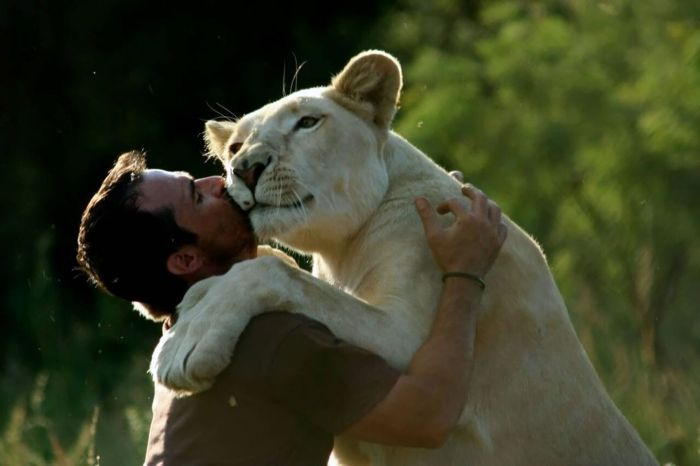 Kevin Richardson - Lion - 4